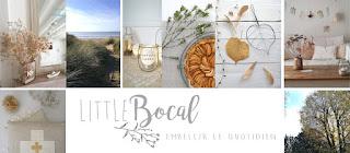 http://littlebocal.blogspot.com/
