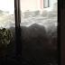 越冬 落雪 対策 安くて丈夫がいい