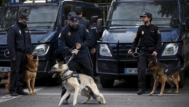 Organizan una exhibición canina en un instituto de España y detectan a tres menores con drogas