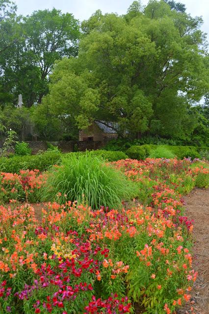 Gardens, Flowers
