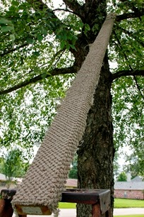 Image of carpet-covered 2x4 ramp in tree