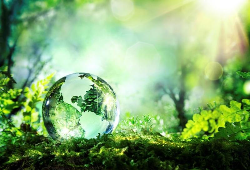 Modern teknoloji dünyadaki ekosistemi tahrip etti