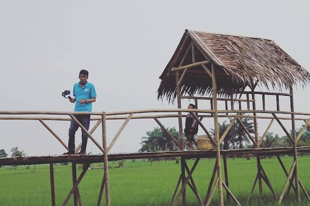 Wisata Sawah Pematang Johar Sumatera Utara