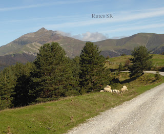 Cañada Transhumante Roncalesa