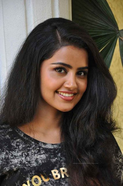 Anupama Next Movie Confirmed With Akhil