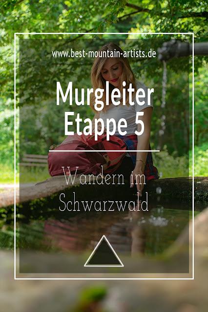Premiumwanderweg Murgleiter | Etappe 5 von Baiersbronn zum Schliffkopf | Wandern nördlicher Schwarzwald 13