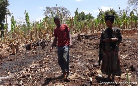 Mujer cristiana en Etiopía muestra cultivos quemados