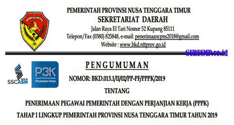 https://www.gurusmp.co.id/2019/02/pengumuman-penerimaan-pppk-lingkup.html
