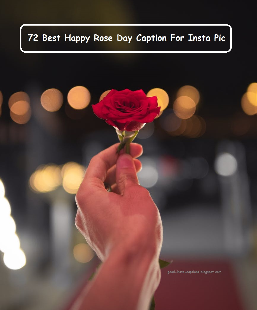 Awesome 72 Caption for Insta Pic for Happy Rose Day