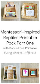 Montessori-inspired Reptiles Printable Pack Bundle Part One with Free Bonus Printable