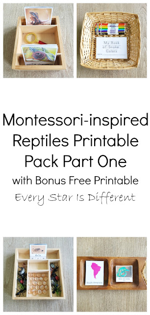 Montessori-inspired Reptiles Printable Pack Bundle Part One with Free Bonus Printable