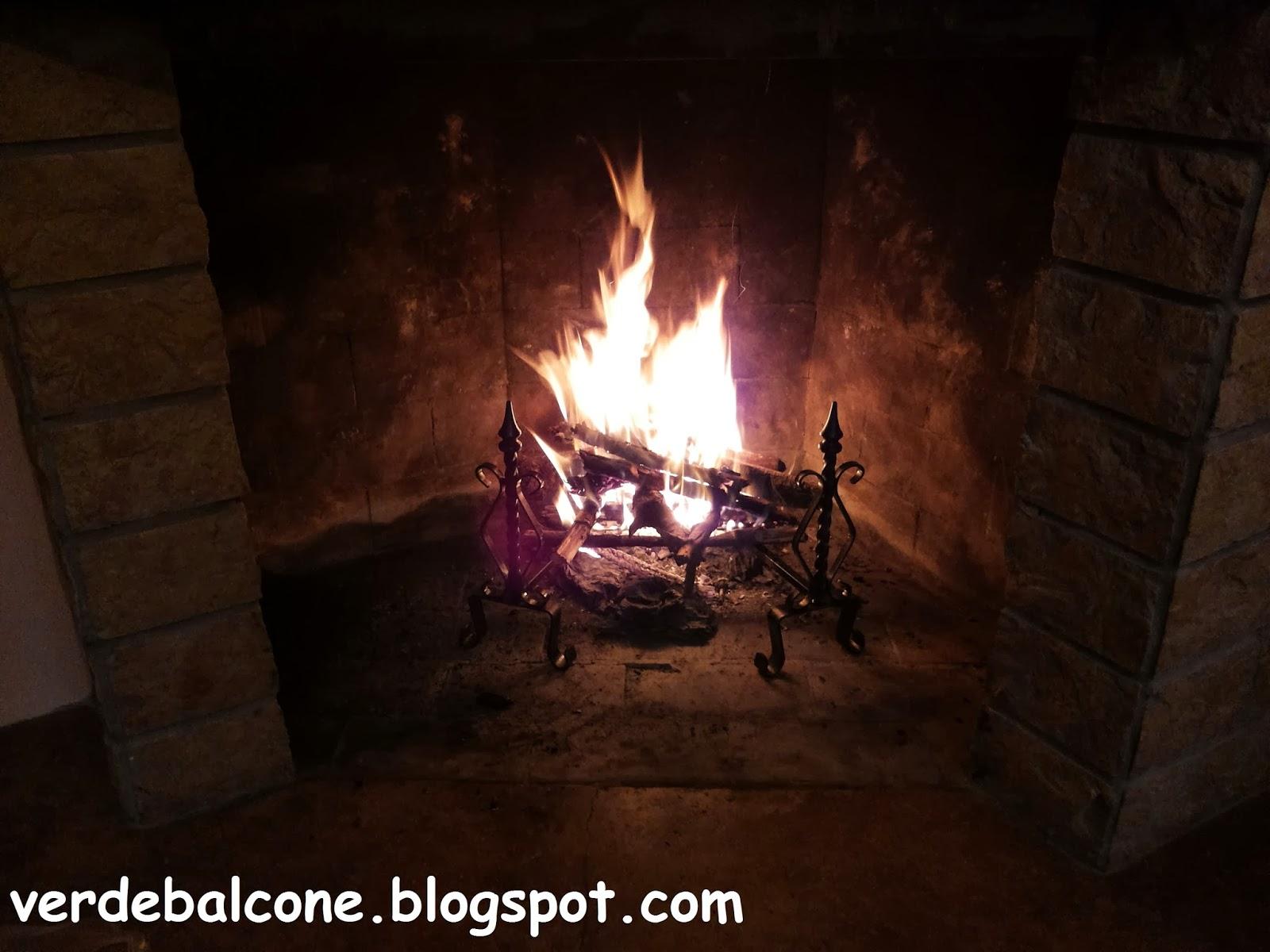 Proprietà Cenere Di Legna verde balcone.: cenere di legna, ecco come utilizzarla.