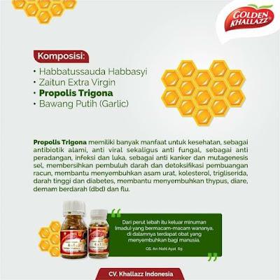Manfaat Propolis Trigona