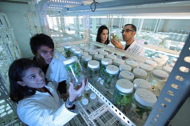 daoursoal.com - Bioteknologi