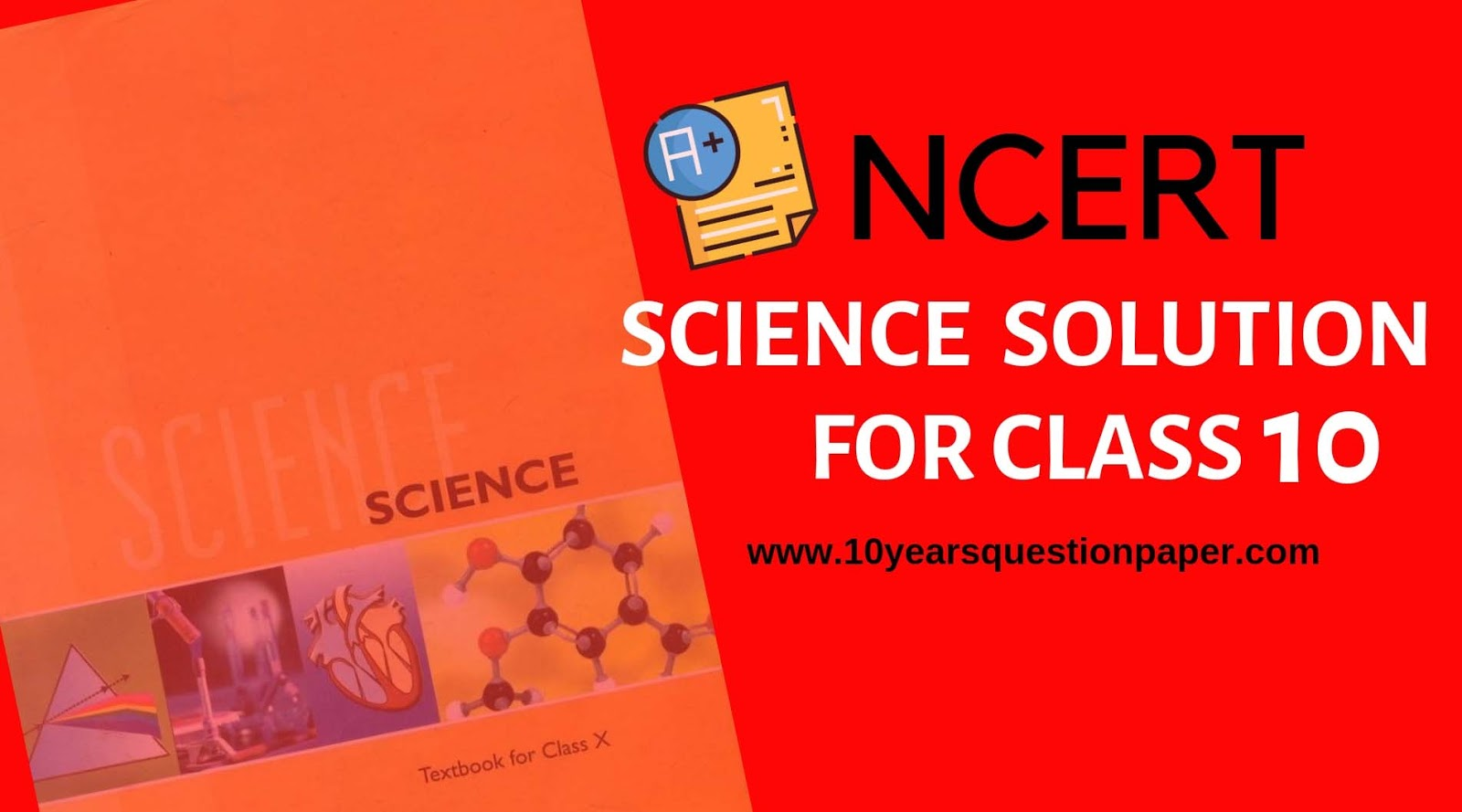 NCERT Science Solution for class 10: Download PDF