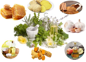 Best All Natural Antibiotics