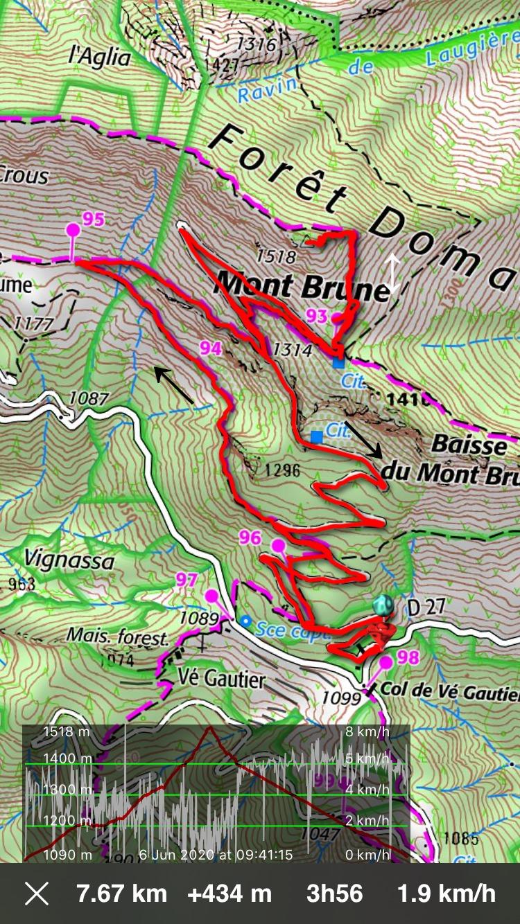 Mont Brune hike track