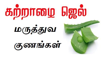 aloe vera gel benefits in tamil