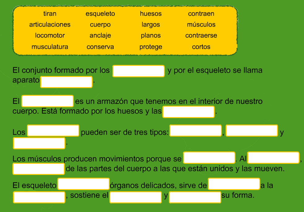 http://www.primerodecarlos.com/TERCERO_PRIMARIA/octubre/Unidad2/actividades/cono/aparato_locomot/visor.swf