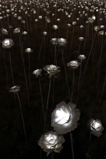 Iconic Dongdaemun Design Plaza (DDP) - LED roses | www.meheartseoul.blogspot.com