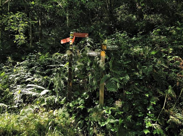 Desviación para subir a la izquierda al Montecín