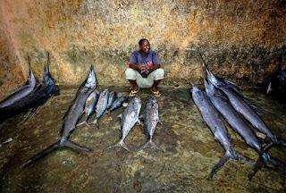 cara memancing banyak ikan