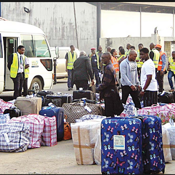 Image result for South Africa Deports 97 Nigerians For Committing Various Offences