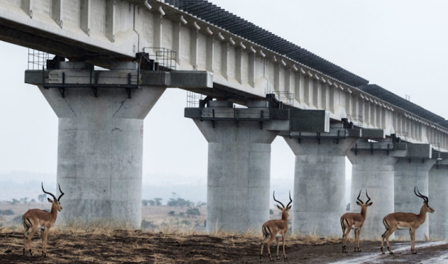Infraestructura en parque natural