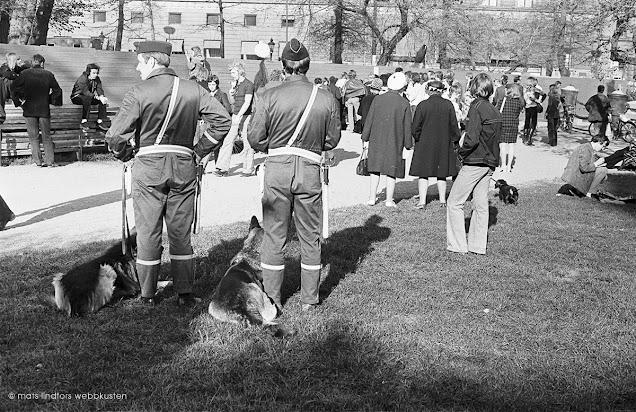 Almstriden i Kungsträdgården Stockholm 1971