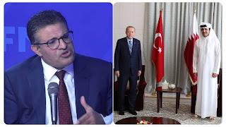 رفيق عبد السلام : تركيا وقطر هما الأكثر جرأة في مواجهة إسرائيل و تحرير الأقصى