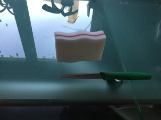 Eponge pour le jelly cube slime