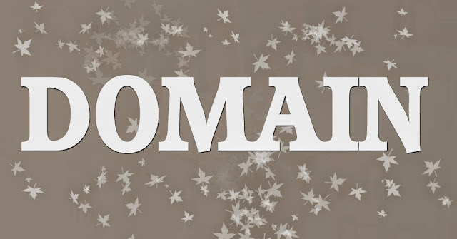 Benefit of long time domain registration