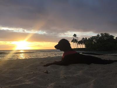 Paradise Cove Beach