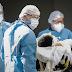 Samambaia é a segunda cidade do DF com mais mortes pelo Coronavírus