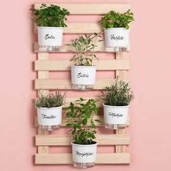 Como fazer uma horta no apartamento