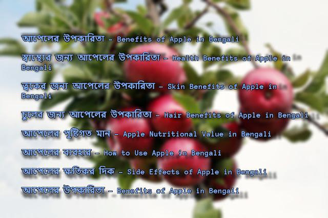 আপেলের উপকারিতা, ব্যবহার এবং ক্ষতিকর দিক – Apple Benefits, Uses and Side Effects in Bengali