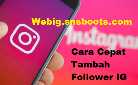 Webig.snsboots.com Followers - Tambah Follower Instagram Gratis
