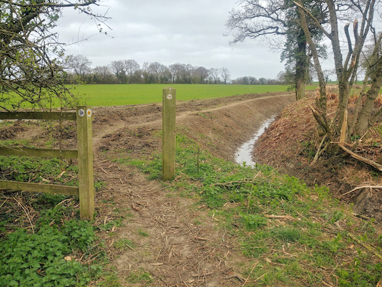 Take Cottered footpath 29 with the drainage ditch on the right and field on the left