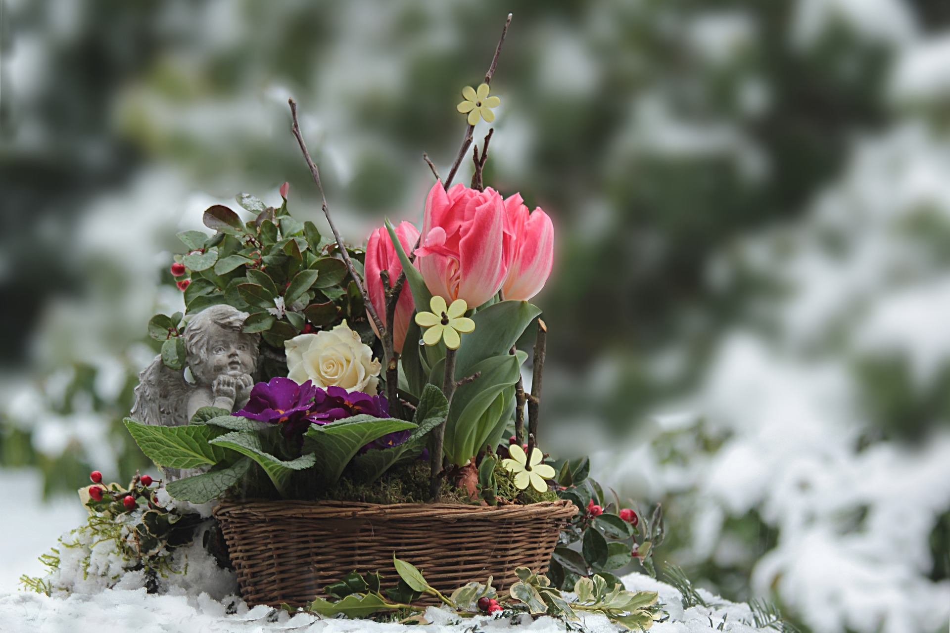 Winterizing A Garden and Landscape