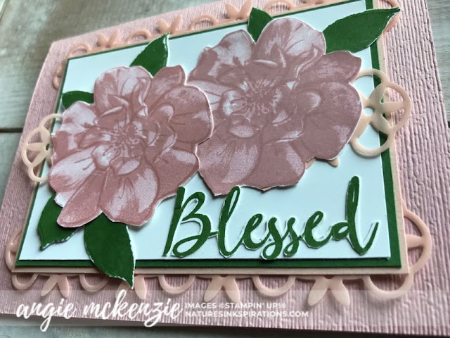 A Wild Rose for Kylie's International Blog Highlights - July 2019 | To A Wild Rose bundleby Stampin' Up!® | Nature's INKspirations by Angie McKenzie