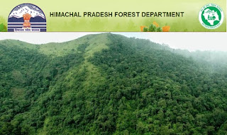 HP Forest Dept Recruitment 2017