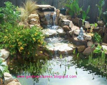 Garden Design Front Of House house garden design ideas
