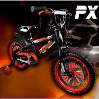 18 phoenix px9812 bmx