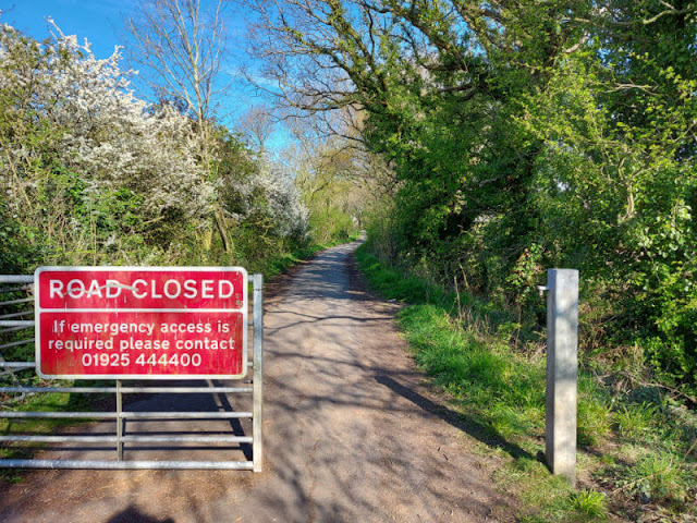 """A paved road extending into the woods beyond a red """"road closed"""" sign"""