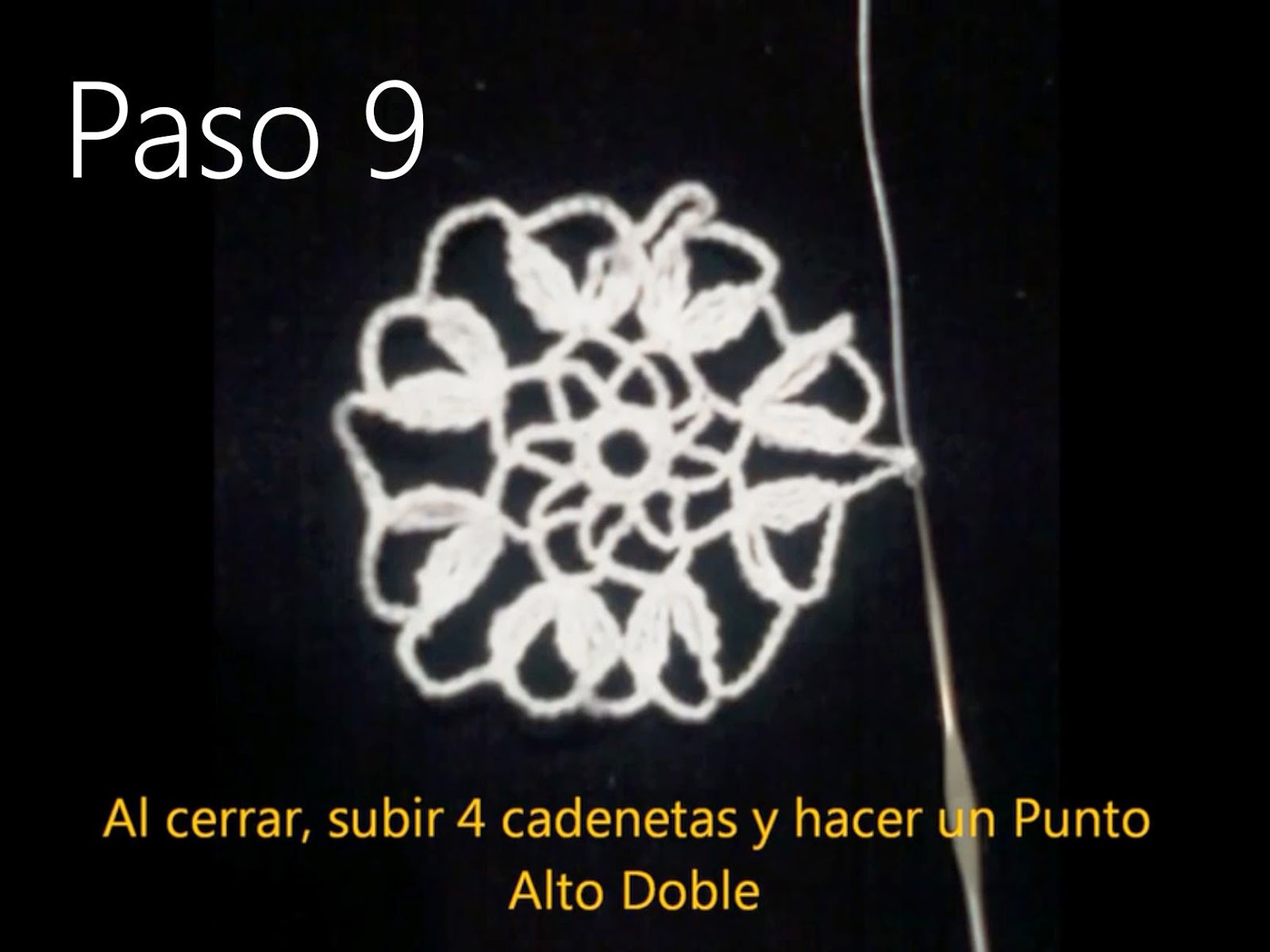 Tapete Flor Paso 9