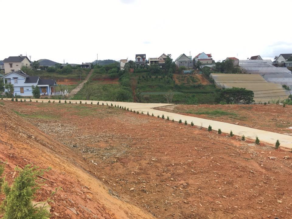 Lựa chọn đầu tư đất nền Đà Lạt 3 tỷ phù hợp