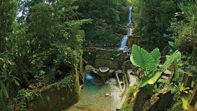 Fotografía de El Jardín del Edén de Edward James - Las Pozas