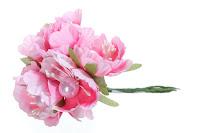 https://www.craftymoly.pl/pl/p/Kwiaty-jabloni-rozowe-4-cm/5284