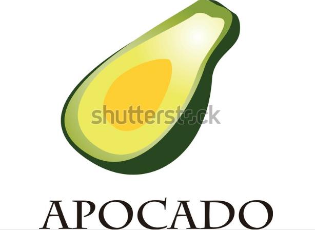 illustration icon avocado