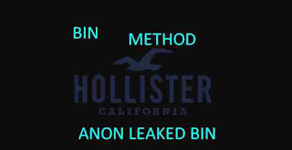 BIN METHOD HOLLISTER Working Updated
